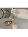 60S Silver Blond, Tape Hair Extensions, 50 cm langt, luksus hår til påsætning
